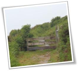 clifden_path2