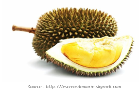 http://www.blog-trotteurs.com/wp-content/uploads/2014/08/flore_durian.png