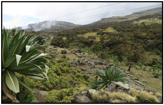 simien_landscape6