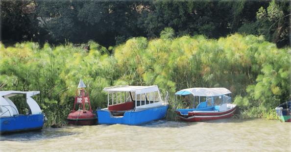 bd_boats