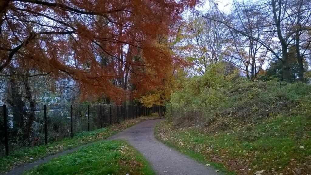 Automne au parc St Germain